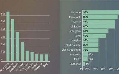 Infografik Social Media Schweiz