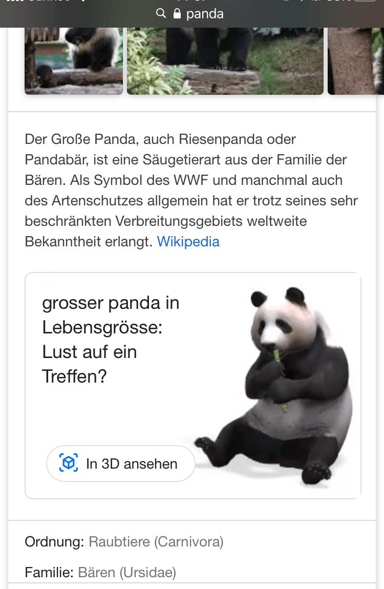 Panda Google Suche